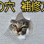 壁の穴 補修方法 石膏ボードの穴修理方法(壁ドンの後に)動画